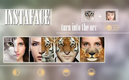 InstaFace: Face morphing